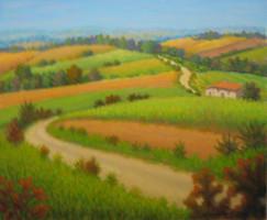 Sentiero tra i campi