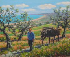 In campagna con l'asino