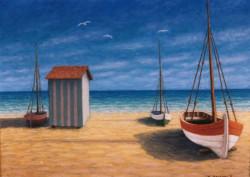 Marina con barche e capanno
