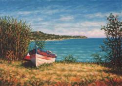 Vecchia barca tra le canne