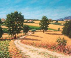 Paesaggio con campi di grano